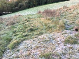 scything with frost